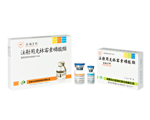 Clindamycin Phosphate for Injection [0.3g/vial]